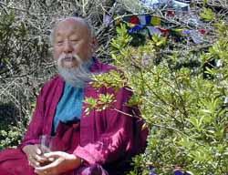 rinpochecapah.echagdudtulkurinpoche.jpg